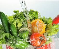 verduras 11